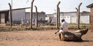A male prisoner sits on a tree stump and reads a book in the yard of Mutimurefu Prison, whilst other prisoners chop wood in the background