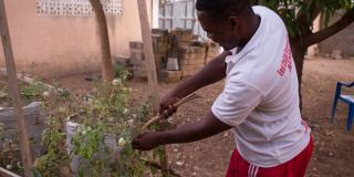 Peter Okoth is a Kenyan volunteer supporting farmers in Ghana