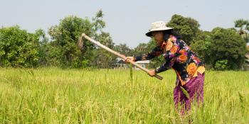 Yu Saret farming in her field.