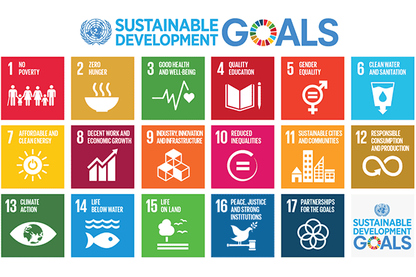 Graphic showing the sustainable development goals