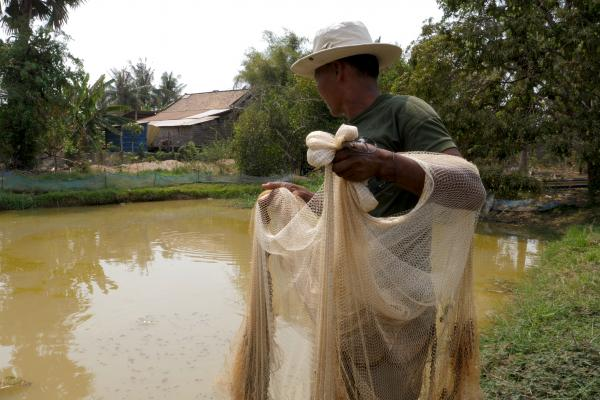 A fisherman prepares to cast a net to catch fish from a pond
